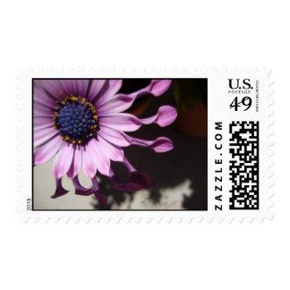 Purple spoon flower postage