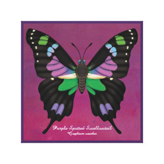 Purple Spotted Swallowtail Canvas Print