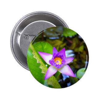 Purple Star Button