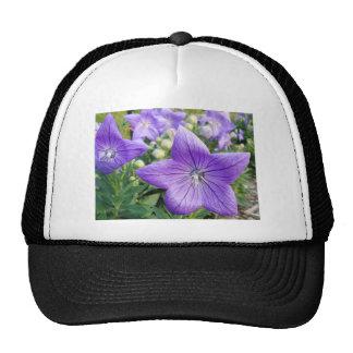 Purple Star Trucker Hats
