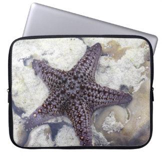 Purple Starfish Computer Sleeve