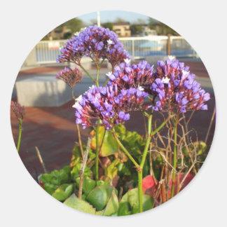 Purple Statice flowers stickers