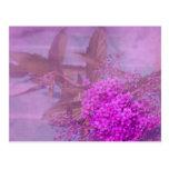 purple summer dream postcard