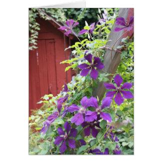 Purple Summer Haze Greeting Cards