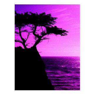 Purple Sunset Beach Tree Ocean Peace Love Destiny Postcard