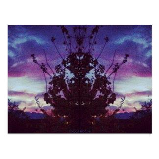 Purple Sunset Reflection Post Card