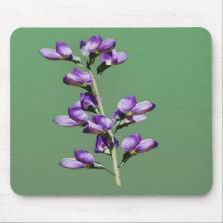 Purple Sweet Peas Flowers Mousepad
