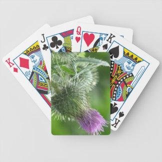purple thistle bloom card decks