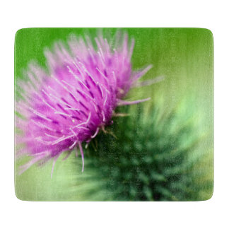 Purple thistle flower Glass chopping board