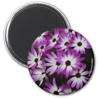 Purple Tips Magnet