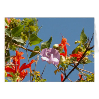 Purple Tree Orchid and Orange Flowers Greeting Card