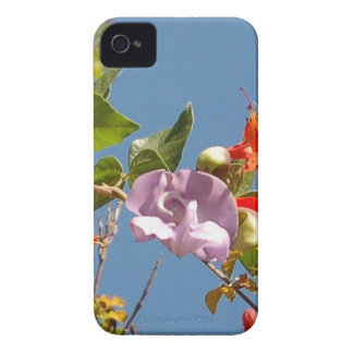Purple Tree Orchid and Orange Flowers iPhone 4 Case