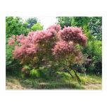 Purple Tree Postcard