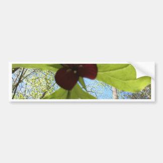 purple trillium bumper sticker