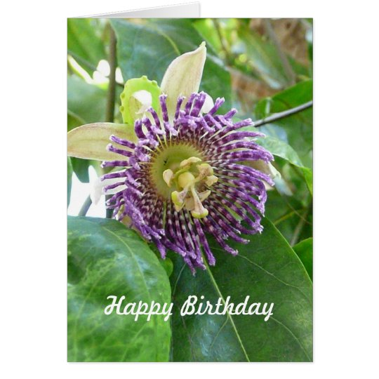 Purple Tropical Passion  Flower Birthday Template