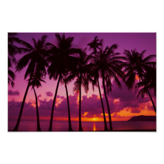 Purple Tropical Sunset 1 Poster