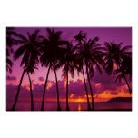 Purple Tropical Sunset Poster
