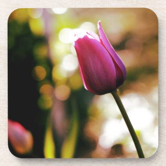 purple tulip drink coaster