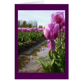 Purple Tulip Fields & Reflections Card