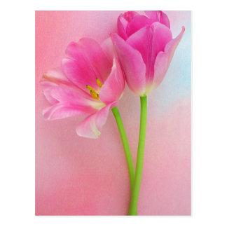 Purple Tulip Flowers Floral Tulips Flower Postcard