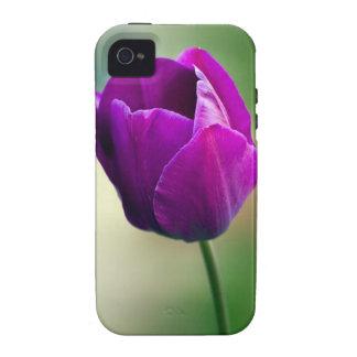 Purple Tulip Vibe iPhone 4 Cover