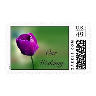 Purple Tulip Wedding Postage Stamp
