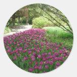 Purple Tulips (3033) Sticker