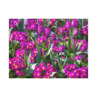 Purple tulips and primroses canvas print