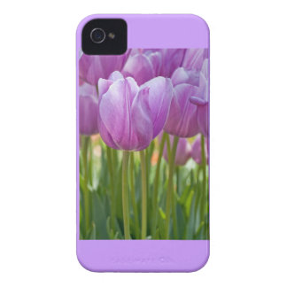 Purple Tulips Blooming in Spring iPhone 4 Case-Mate Case