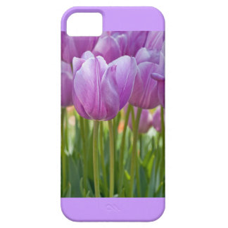 Purple Tulips Blooming in Spring iPhone SE/5/5s Case