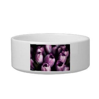 Purple Tulips Cat Bowl