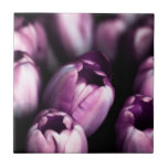 Purple Tulips Ceramic Tiles