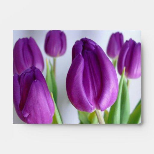 Purple Tulips Envelopes