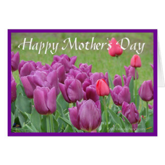 Purple Tulips Flower Art Mothers Day Card Template