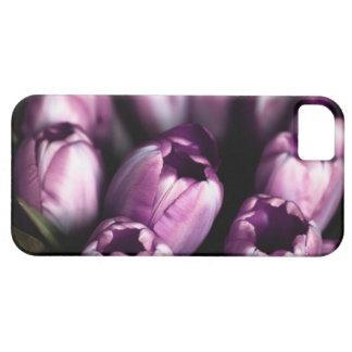 Purple Tulips iPhone SE/5/5s Case