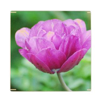 Purple Tulips Wood Coaster