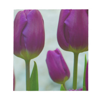 Purple Tulips Note Pad