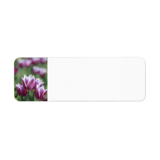 Purple Tulips, Spring Return Address Label