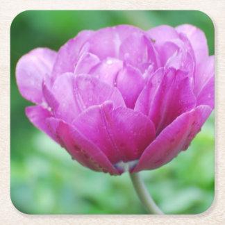 Purple Tulips Square Paper Coaster