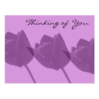Purple Tulips - Thinking of You Postcard