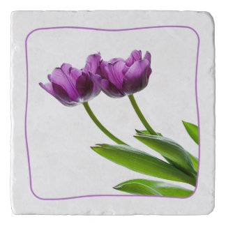 Purple Twin Tulips Spring Floral Isolated Photo Trivet
