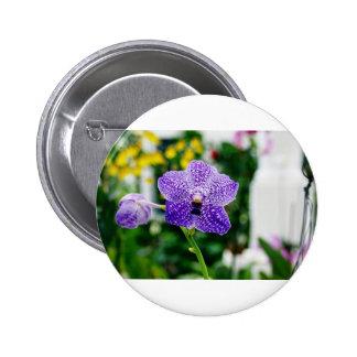 Purple Vanda Orchid Flower Button