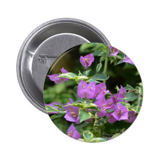 Purple Variegated Crepe and Myrtle Button