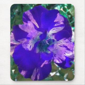 Purple Variegated Rose mousepad