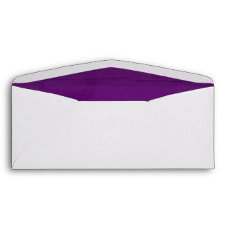 Purple Velvet Textured Lining 10 Envelope
