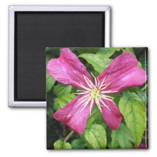 Purple Vine Flower Magnet
