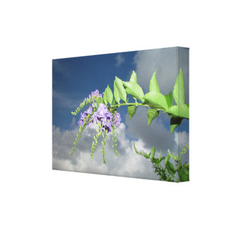 Purple vine flowers Stretched Canvas Print