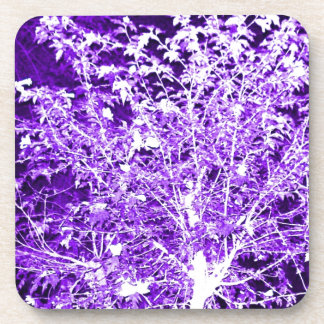 Purple Violet Abstract Tree Branches Beverage Coaster