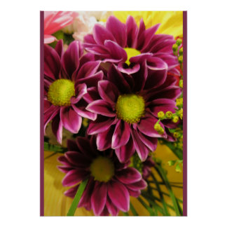Purple Violet Chrysanthemums (Photo) Poster