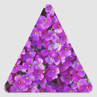 Purple violet flowers background triangle sticker